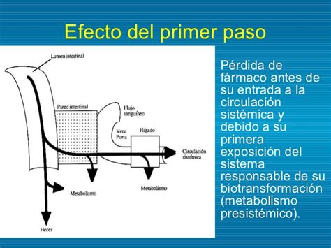 inhibidor enzimatico farmaco biotransformaci 243 n