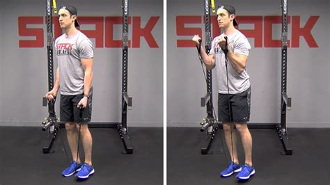 10 biceps exercises better than traditional curls stack biceps workouts made better 10 exercises superior to
