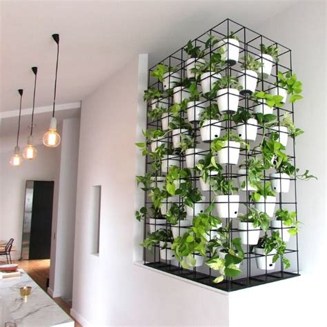 Indoor Wall Garden by 25 Best Ideas About Indoor Vertical Gardens On