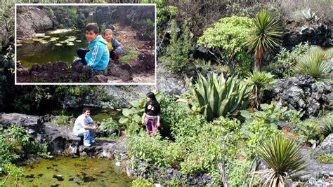 imagenes de hola jardin d 237 a del ni 241 o cinco grandes ideas para ir de aventura con
