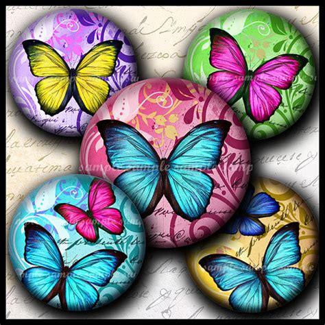 Instan Butterfly instant new colorful butterflies 673 4x6 bottle cap