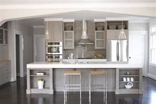 Grey Cabinet Kitchens Astonishing Grey Kitchen Cabinets The Futuristic Color Mykitcheninterior