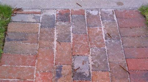 Quikrete Patio Paver Jointing Sand Quikrete Patio Paver Jointing Sand Home Design Ideas And Pictures