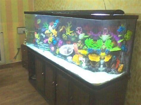 aquarium l fish mirror frame moving picture china acrylic aquarium acrylic fish tank for sale photos