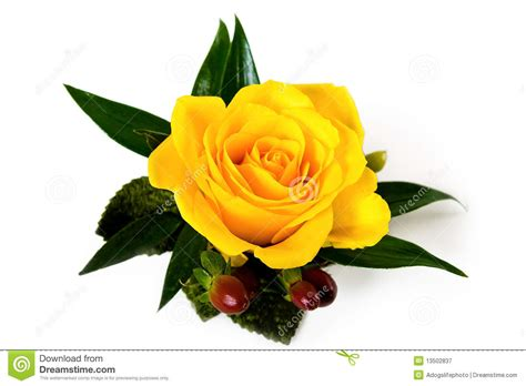yellow rose boutonniere with autumn accents stock image
