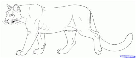 puma and cougar coloring pages only coloring pages