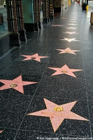 best hollywood star locations 1308 best california images on pinterest california