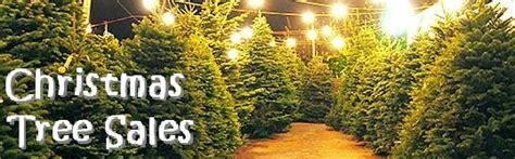 christmas tree lots chicago of catholic parish chicago tree sale