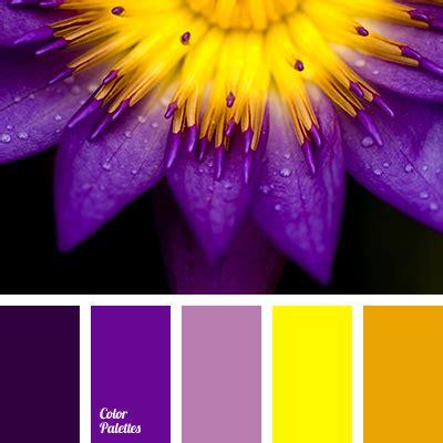 colors that match purple magenta color palette ideas