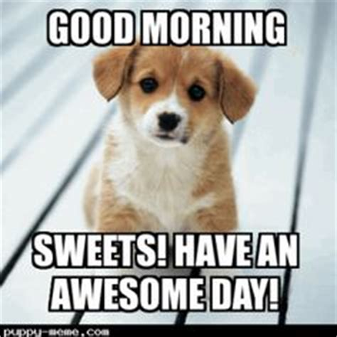 Good Morning Love Meme - 1000 images about hello s good mornings and nights on