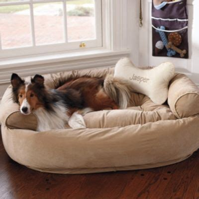 comfy couch bed comfy couch pet bed puppies