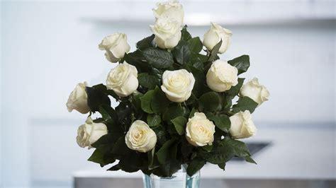 white roses spring   air