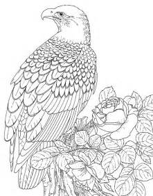 animal coloring pages for adults eagles lions of the sky coloring pages