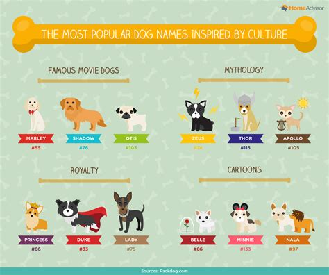 disney names for dogs disney dogs www imgkid the image kid has it
