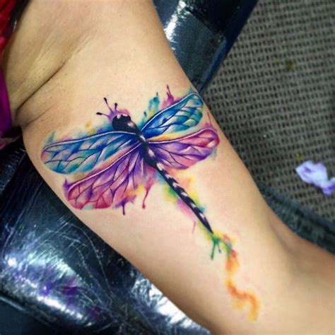 watercolor tattoo kentucky 25 best watercolor dragonfly ideas on