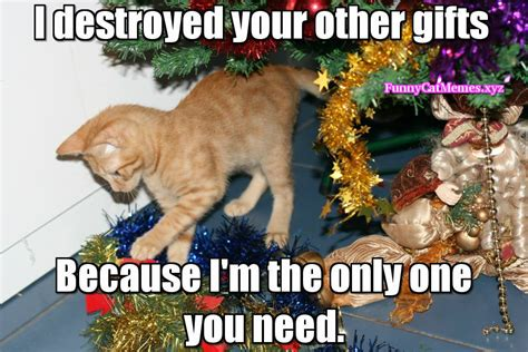Christmas Cat Meme - the only thing you need on christmas is your cat