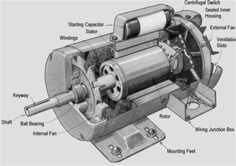 what is induction motor types of induction motor polytechnic hub