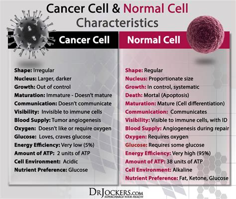 the difference between normal and cancer cells drjockers com