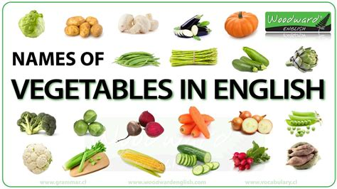different type of leafy vegetable with name vegetables in