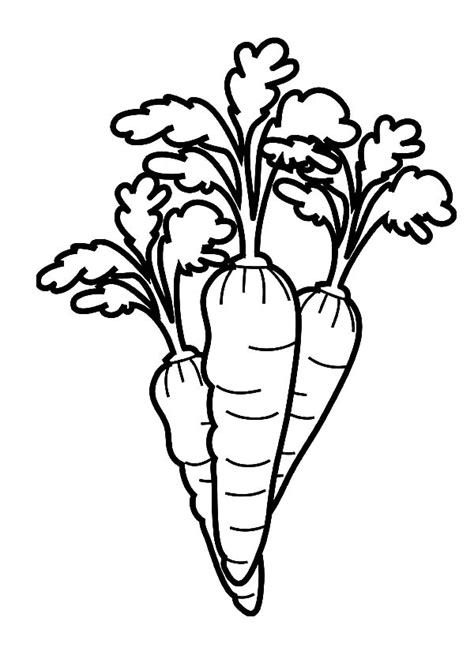 free coloring pages of picture of carrot