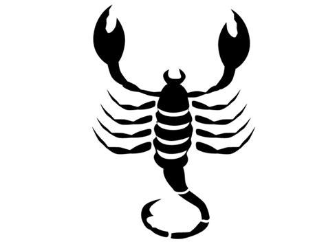 skorpion sternzeichen wandtattoo wandaufkleber sternzeichen skorpion bestellen
