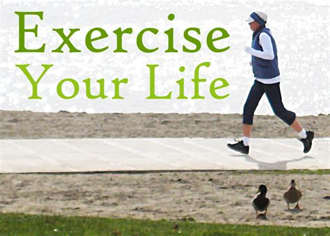 exercise of biography archerfriendly exercise your life six areas to sweat it out