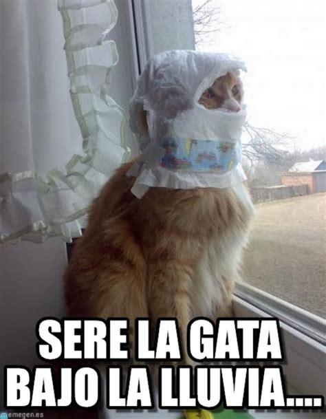 imagenes graciosas bajo la lluvia memes de lluvia related keywords memes de lluvia long