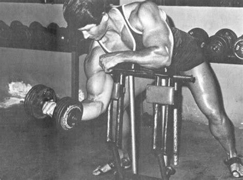 high bench two dumbbell rowing radical muscle solutions tom venuto channels vince gironda muscle