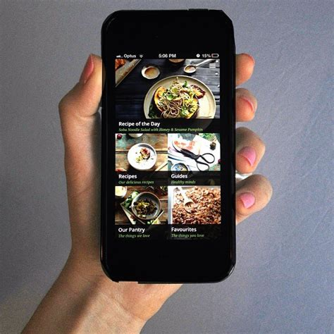 The Whole Pantry App by 10 Iphone Apps Every 30 Something Needs To