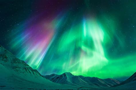 alaska lights tour northern lights tours alaska cjsrods