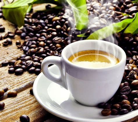 combine the best coffee beans with the best coffee mugs online the definitive guide to the best coffee beans for espresso