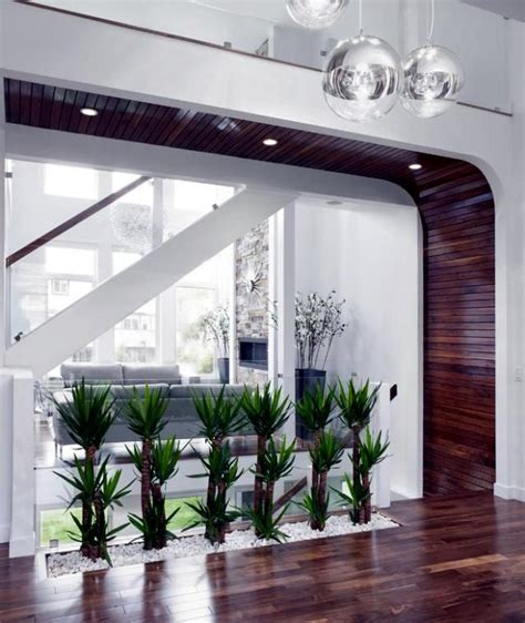 ideas  interior decoration plants creative