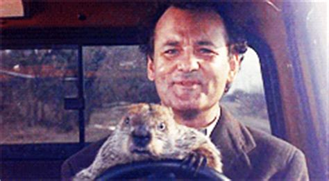 groundhog day giphy bill murray animated gif