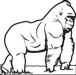 gorilla colors free printable gorilla coloring page for