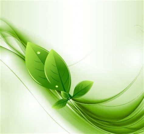 eco daun  hijau gelombang vektor vektor misc vektor