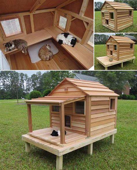cat and dog house 17 best ideas about outdoor cat houses on pinterest outdoor cat shelter cat houses