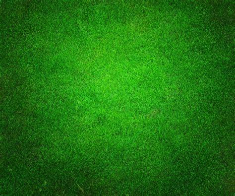 green images golf green background jj resort