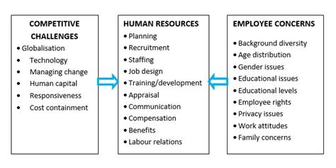 And Development In Hrm Mba Notes by Hr Challenges Hr Challenges In Organizations Human
