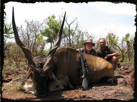african lord derby eland hunting central african republic car giant eland hunting safari