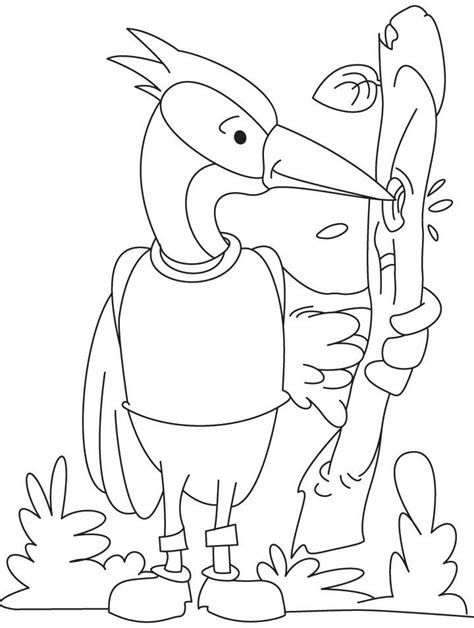 woodpecker coloring page coloring home