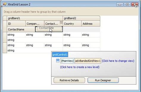 devexpress layout view hide caption xtragrid band and column customization transcript
