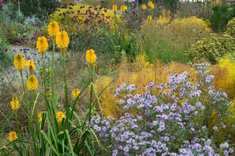 Plante Pour Jardin Sec by Plantes Jardin Sec Tout