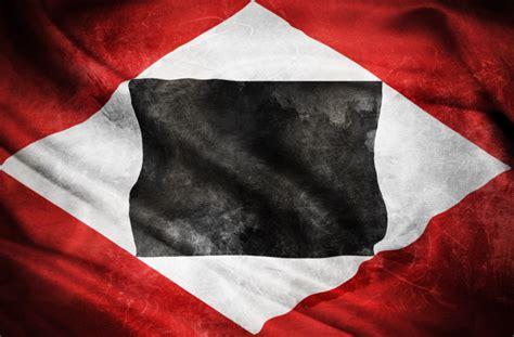 resistencia gocha venezuela gochosresisten resistencia gocha venezuela gochosresisten la bandera