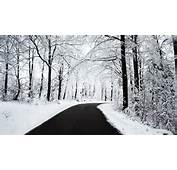 Home Downloads Desktop &amp Modding Wallpaper Winter Pack