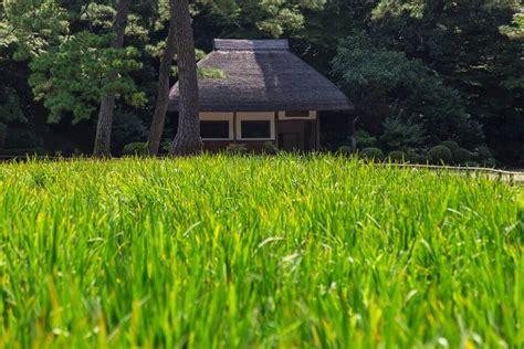 koishikawa korakuen gardens stroll tips
