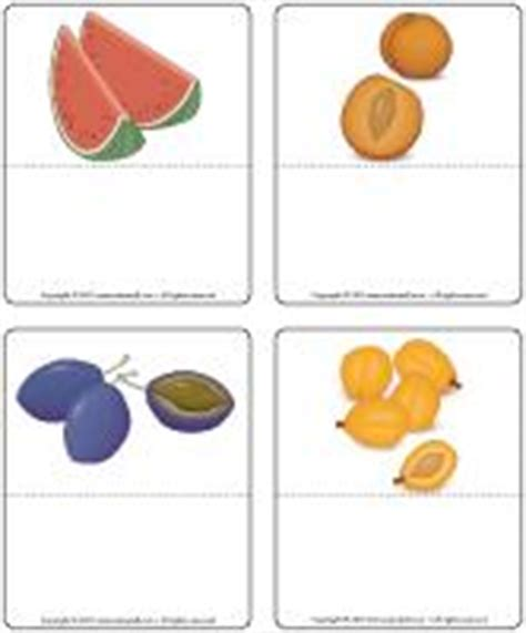 fruit with seeds or pits harvest time theme and activities educatall