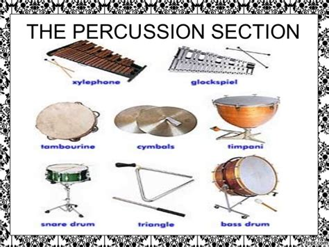 percussion section of the orchestra symphony orchestra