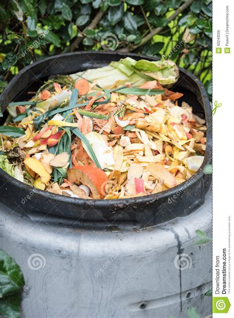 Composting Kitchen Waste At Home by Composting Stock Photo Image 62243006