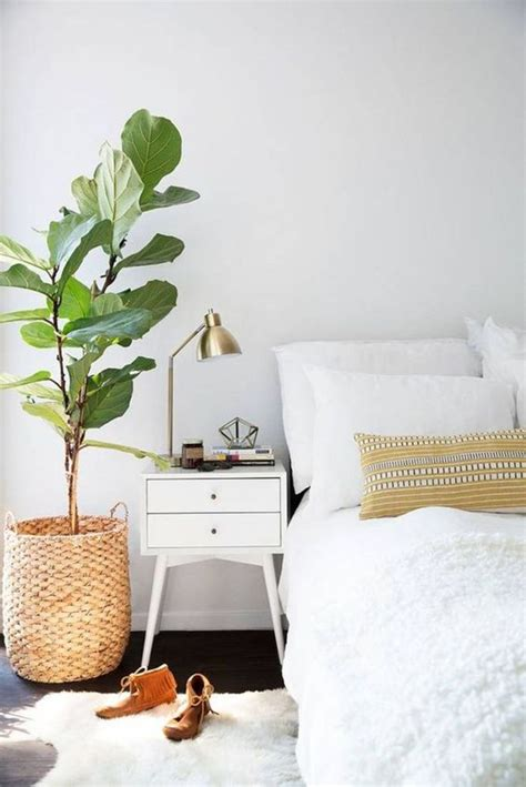 money plant in bedroom 25 best ideas about table de chevet sur pinterest