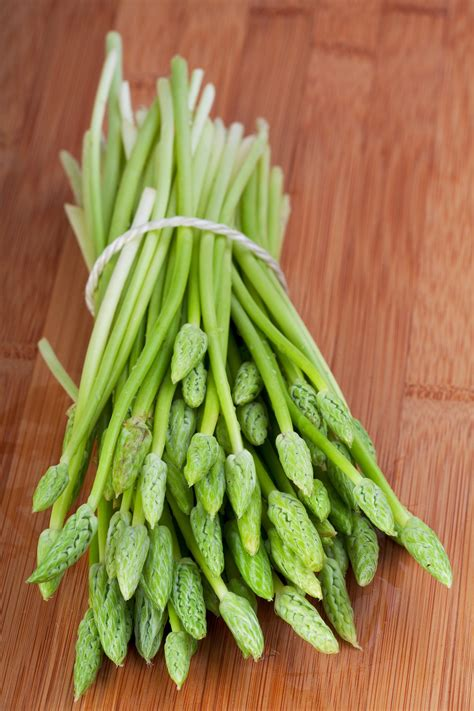 Does Asparagus Detox Your System by Shatavari Health Benefits Side Effects Uses